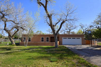 Albuquerque Single Family Home For Sale: 929 Guadalupe Court NW