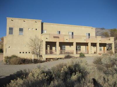Albuquerque Single Family Home For Sale: 12001 Pino Avenue NE