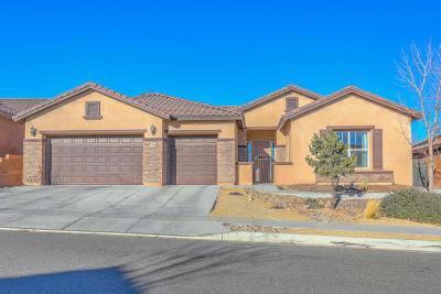 Rio Rancho Single Family Home For Sale: 3723 Linda Vista Avenue NE