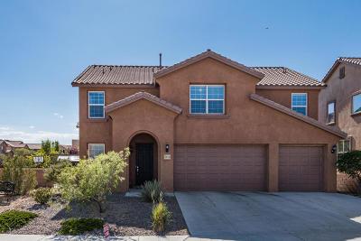 Rio Rancho Single Family Home For Sale: 201 Paseo Vista Loop NE
