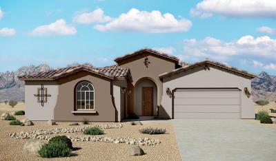 Rio Rancho Single Family Home For Sale: 6929 Yukon Road NE