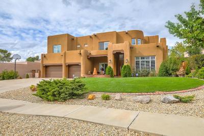 Albuquerque Single Family Home For Sale: 12201 Mountain Haze Road NE