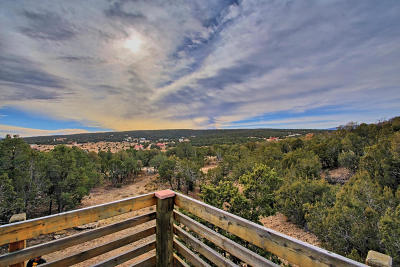 Edgewood Single Family Home For Sale: 15 Rocky Ranch Road