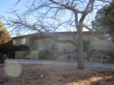 Bernalillo County Single Family Home For Sale: 636 Running Water Circle SE