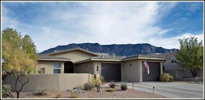 Albuquerque Single Family Home For Sale: 13123 Sunrise Trail Place NE