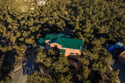 Tijeras, Cedar Crest, Sandia Park, Edgewood, Moriarty, Stanley Single Family Home For Sale: 28 Angeles Vista Circle