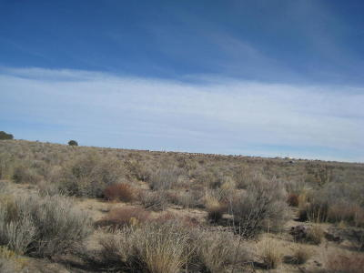 Rio Rancho Residential Lots & Land For Sale: 21st Street NW