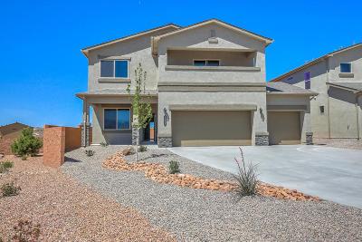 Rio Rancho Single Family Home For Sale: 1011 Grace Ct NE