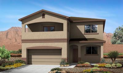 Rio Rancho Single Family Home For Sale: 713 Loma Pinon Loop NE