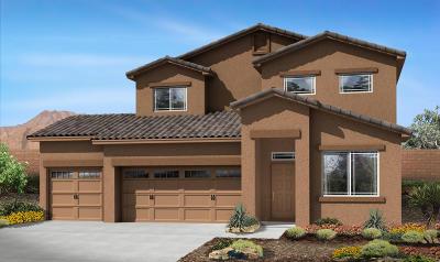 Rio Rancho Single Family Home For Sale: 1542 White Pine Drive NE