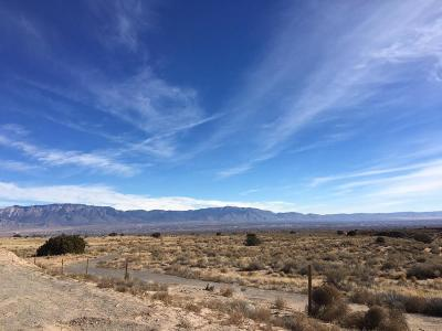 Bernalillo County Residential Lots & Land For Sale: 6204 Camino Alto Road NW