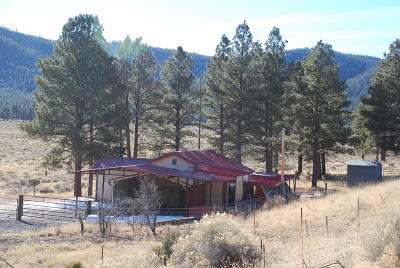 Catron County Single Family Home For Sale: 1980 Jewett Gap Hwy 32, Mm 20