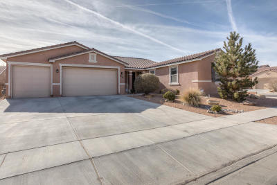 Albuquerque Single Family Home For Sale: 8636 Wild Dunes Road NW