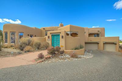 Albuquerque Single Family Home For Sale: 5009 Cresta Del Sur Court NE