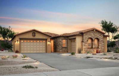 Albuquerque Single Family Home For Sale: 9000 Vista Bosquejo Road NW