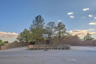 Rio Rancho Single Family Home For Sale: 2004 Suttle Court NE