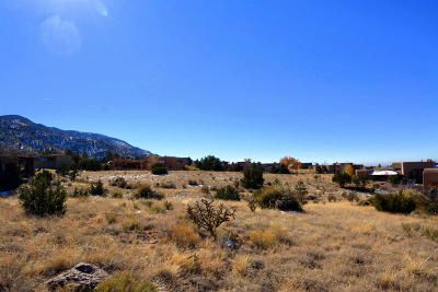 Bernalillo County Residential Lots & Land For Sale: 13648 Apache Plume Place NE
