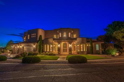 Albuquerque Single Family Home For Sale: 5701 Tierra Viva Place NW