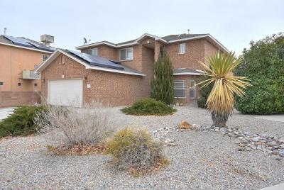 Albuquerque Single Family Home For Sale: 4212 Packaway Road NW