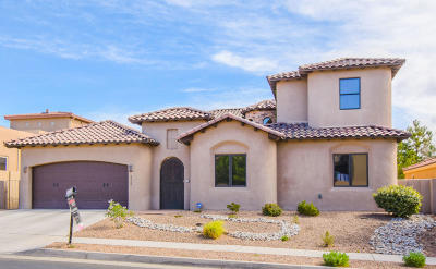 Albuquerque Single Family Home For Sale: 4408 Oxbow North Trail NW