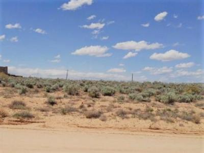 Rio Rancho Residential Lots & Land For Sale: 2213 Chetah Road NE