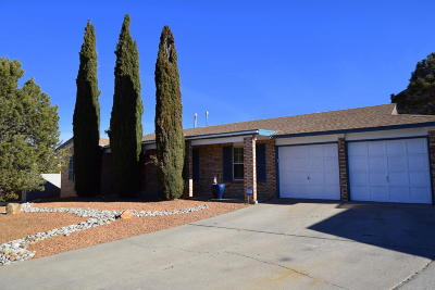 Albuquerque Single Family Home For Sale: 4709 Bali Court NE