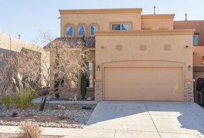 Albuquerque, Rio Rancho Single Family Home For Sale: 2526 Treviso Drive SE