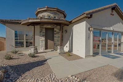 Single Family Home For Sale: 7301 Dana Point Drive NE