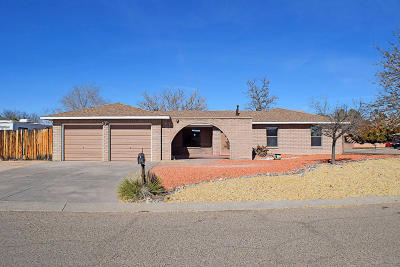 Valencia County Single Family Home For Sale: 1708 Plunkett Court