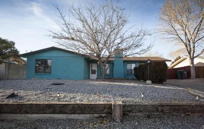 Rio Rancho Single Family Home For Sale: 1645 Brenda Road SE