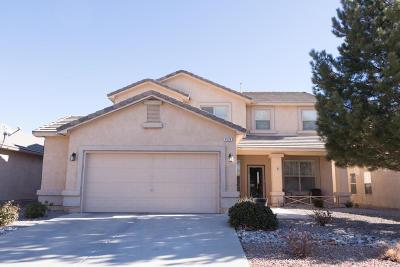 Rio Rancho Single Family Home For Sale: 1524 Ricasoli Drive SE