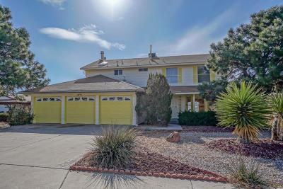 Albuquerque Single Family Home For Sale: 12508 Charla Court SE