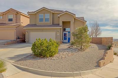 Albuquerque, Rio Rancho Single Family Home For Sale: 1327 Mirador Loop NE