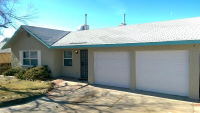Albuquerque Single Family Home For Sale: 1513 Willys Knight Drive NE