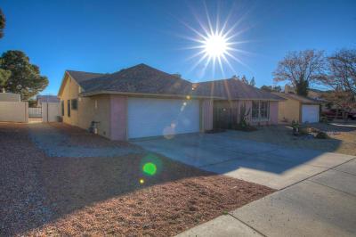 Albuquerque Single Family Home For Sale: 6612 Christy Avenue NE