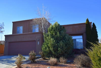 Santa Fe Single Family Home For Sale: 4046 Painted Pony Circle