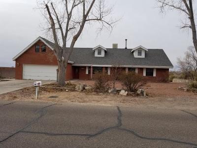 Albuquerque, Rio Rancho Single Family Home For Sale: 115 Tarpon Avenue SE