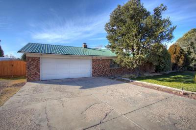 Albuquerque Single Family Home For Sale: 1000 Sandia Road NW
