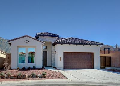 Albuquerque Single Family Home For Sale: 9112 North Star Lane NE