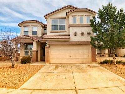 Albuquerque Single Family Home For Sale: 10404 Oso Ridge Place NW