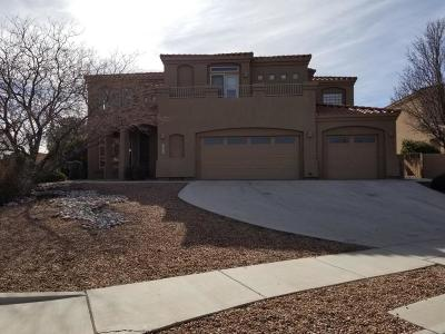 Albuquerque Single Family Home For Sale: 5200 Old Adobe Trail NW