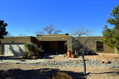 Albuquerque Single Family Home For Sale: 1105 Wagon Train Drive SE