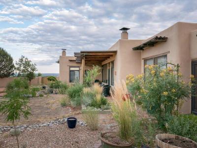 Placitas Single Family Home For Sale: 124 Vista Montana Loop