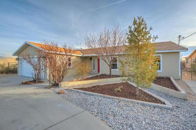 Rio Rancho Single Family Home For Sale: 3324 19th Avenue SE