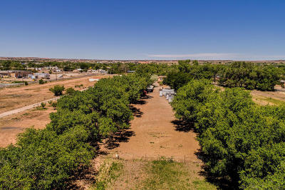 Bernalillo Residential Lots & Land For Sale: Camino Del Pueblo