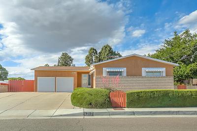 Single Family Home For Sale: 6217 Prairie Road NE