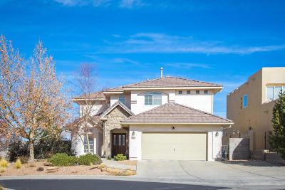 Albuquerque Single Family Home For Sale: 9027 Lazy Brook Court NE