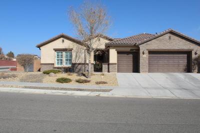 rio rancho Single Family Home For Sale: 3803 Linda Vista Avenue NE