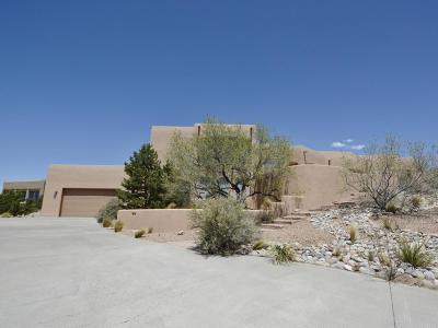 Placitas Single Family Home For Sale: 204 Camino De Las Huertas