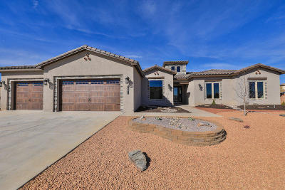 Los Lunas Single Family Home For Sale: 1591 Camino Canyon SW